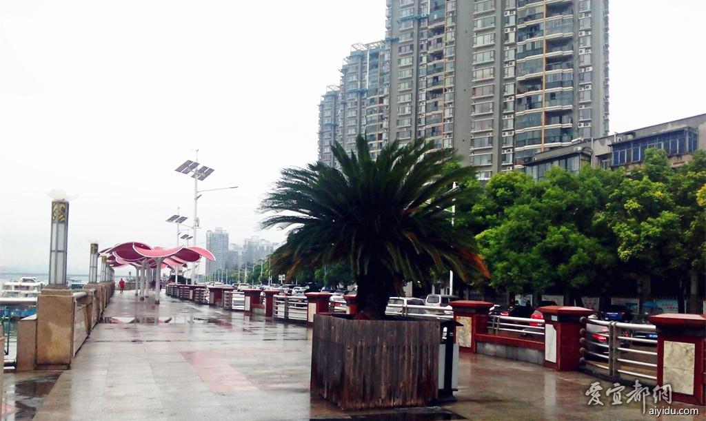 襄阳江边公园 (6).jpg