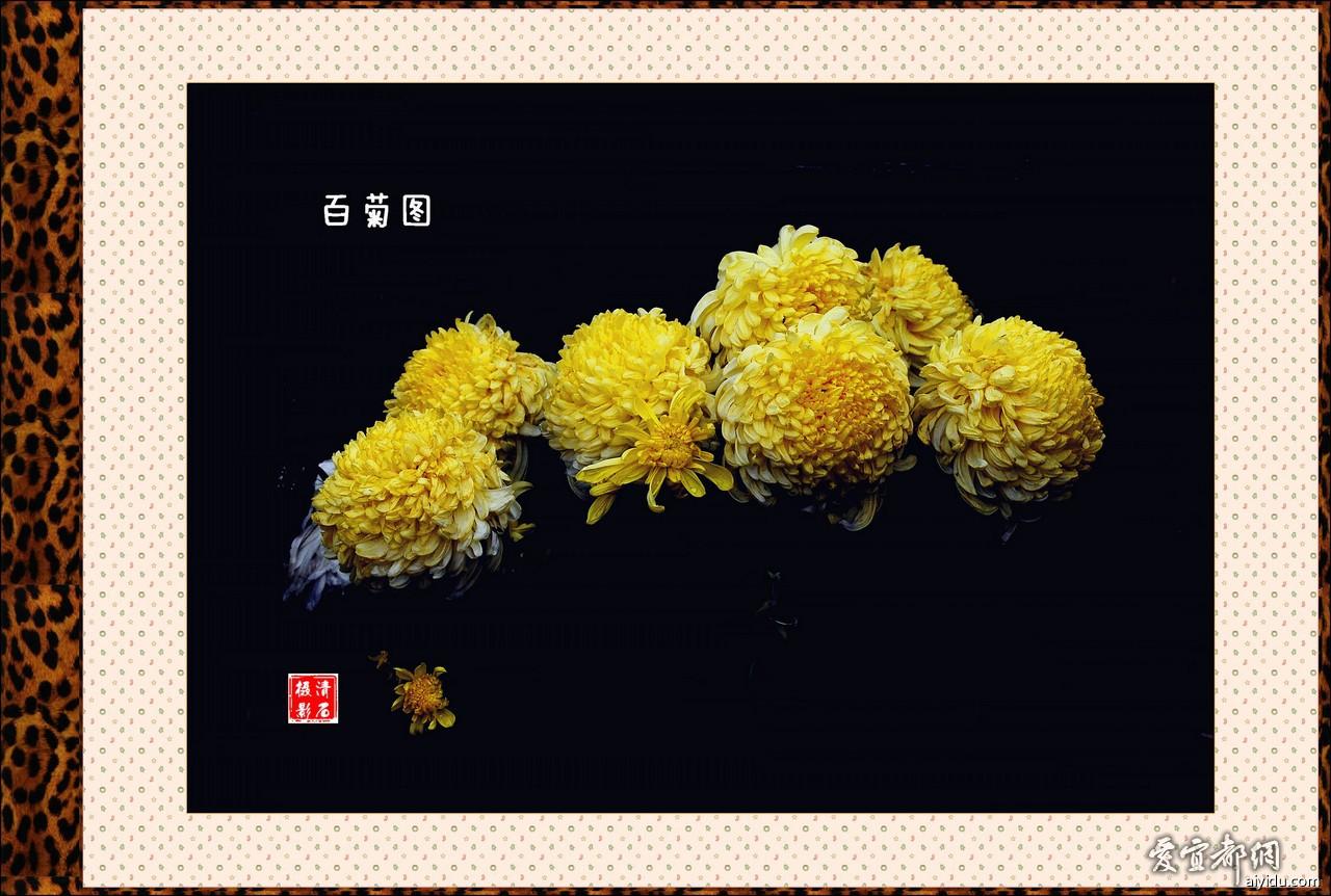 DSC_7614_1_11_1_11.jpg