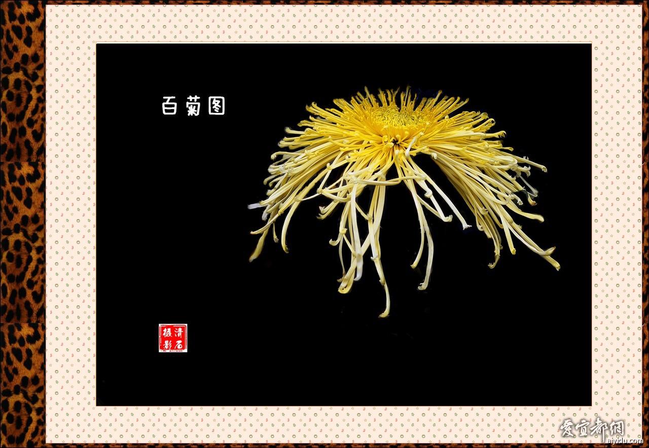 DSC_7718_1_1_1_1.jpg