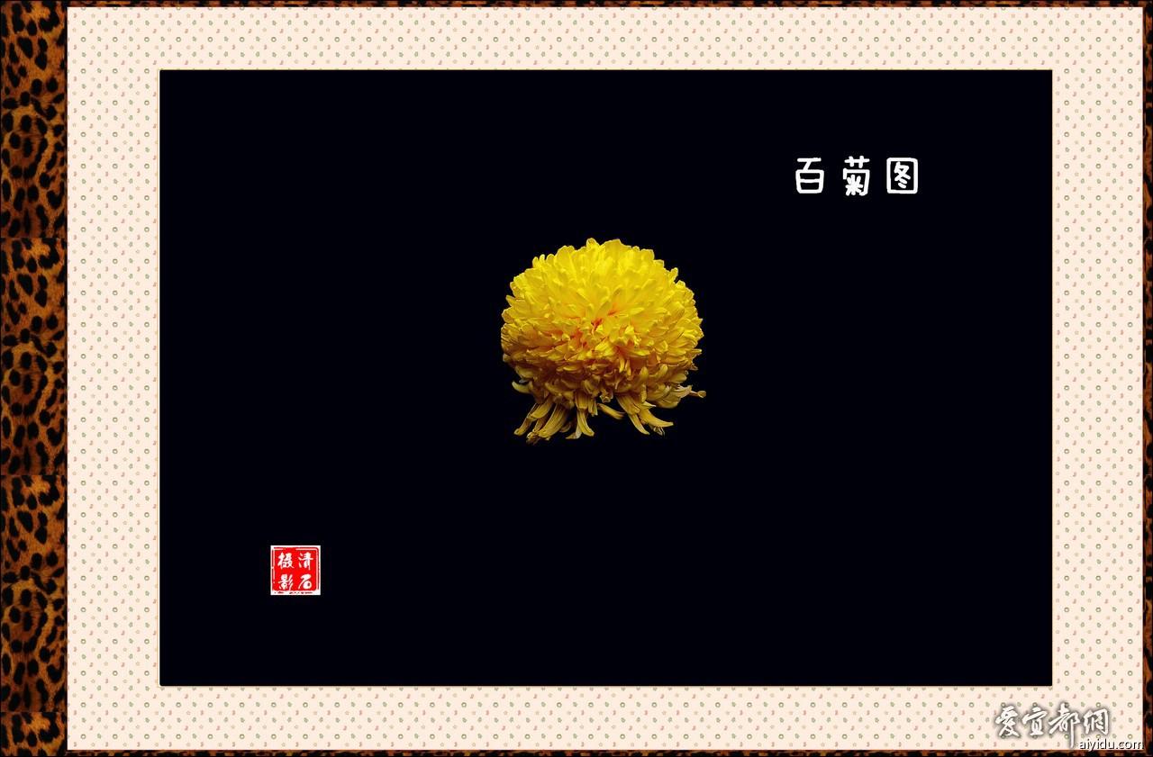 DSC_7798_1_1_1_1.jpg