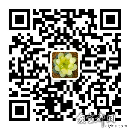 mmqrcode1569317234927.png