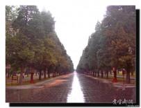 宜都人拍北京37——天坛公园