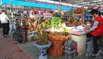 宜都人拍北京53——北京园林、盆景、花卉市场(2)