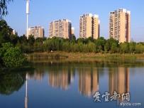 夏日文峰公园随拍