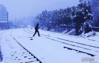 白雪覆盖下的铁路