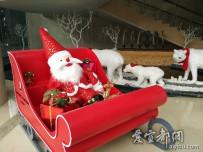 宜都人拍深圳        圣诞来袭商家忙(二)