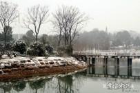 2015年的文峰公园雪景【原创摄影】