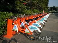 宜都人拍深圳        公共自行车