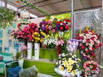 宜都人拍北京52——北京园林、盆景、花卉市场(1)