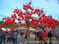 宜都人拍北京37——北京春节庙会