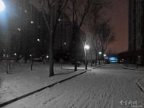 北方的春雪