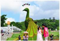 巨型孔雀绿雕