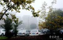 宜都 今天 早上的   雾