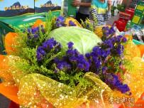 柑橘品尝会上的蔬菜花