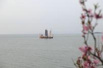难得一见的太湖七桅帆船